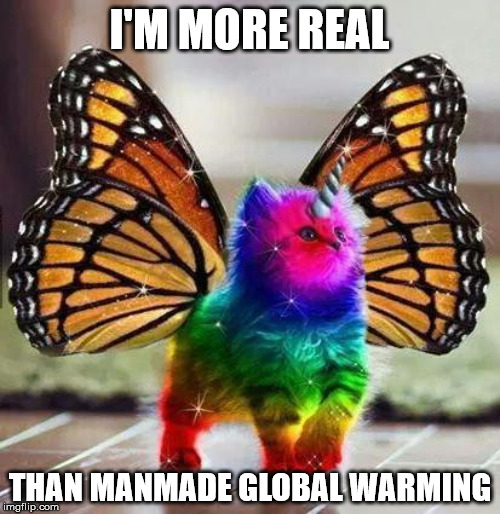 Rainbow unicorn butterfly kitten |  I'M MORE REAL; THAN MANMADE GLOBAL WARMING | image tagged in rainbow unicorn butterfly kitten,global warming,climate change | made w/ Imgflip meme maker