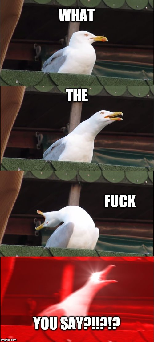 WHAT THE F**K YOU SAY?!!?!? | image tagged in memes,inhaling seagull | made w/ Imgflip meme maker