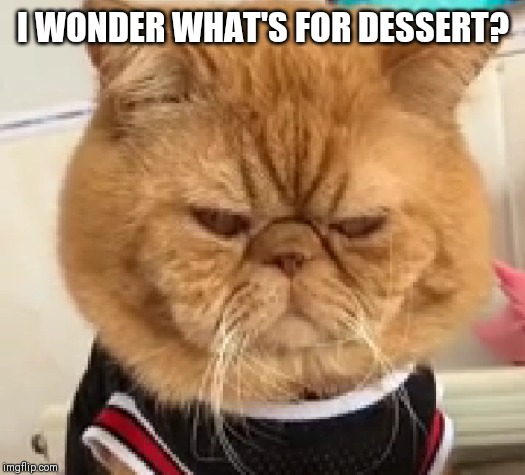 I WONDER WHAT'S FOR DESSERT? | made w/ Imgflip meme maker