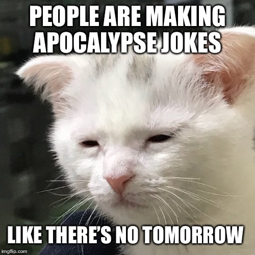 Depressed Cat |  PEOPLE ARE MAKING APOCALYPSE JOKES; LIKE THERE'S NO TOMORROW | image tagged in depressed cat,memes | made w/ Imgflip meme maker
