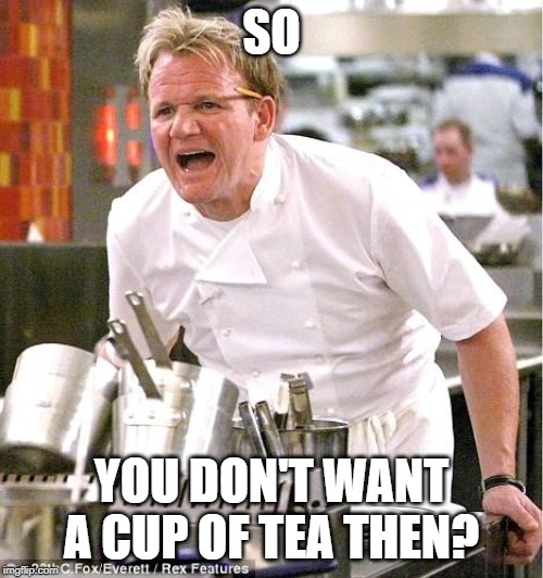 Chef Gordon Ramsay Meme |  SO; YOU DON'T WANT A CUP OF TEA THEN? | image tagged in memes,chef gordon ramsay | made w/ Imgflip meme maker