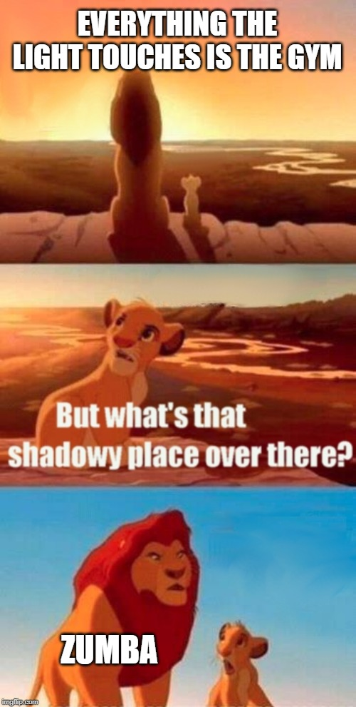 Zumba's fun, but it also makes me wanna die. | EVERYTHING THE LIGHT TOUCHES IS THE GYM ZUMBA | image tagged in memes,simba shadowy place | made w/ Imgflip meme maker
