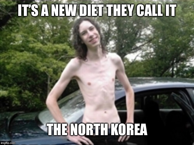 Vegan Dude | IT'S A NEW DIET THEY CALL IT THE NORTH KOREA | image tagged in vegan dude | made w/ Imgflip meme maker