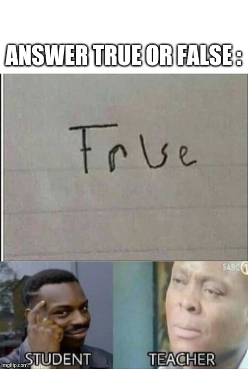 Correct way to answer true or false (meme inspired by shaxyshrops meme) | ANSWER TRUE OR FALSE : | image tagged in meme,school tricks | made w/ Imgflip meme maker