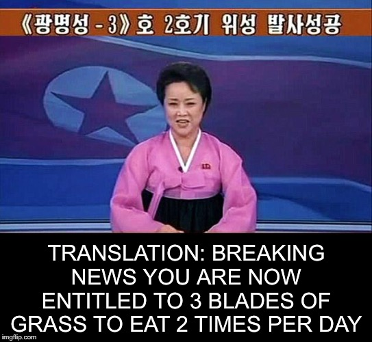 Breaking News. North Korea Edition. | TRANSLATION: BREAKING NEWS YOU ARE NOW ENTITLED TO 3 BLADES OF GRASS TO EAT 2 TIMES PER DAY | image tagged in north korean anchorwoman,memes,funny,breaking news,north korea | made w/ Imgflip meme maker