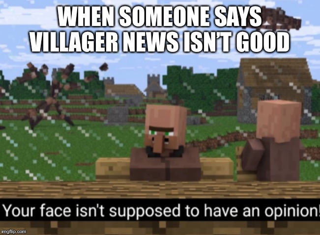 Your face isn't supposed to have an opinion |  WHEN SOMEONE SAYS VILLAGER NEWS ISN'T GOOD | image tagged in your face isnt supposed to have an opinion,minecraft | made w/ Imgflip meme maker
