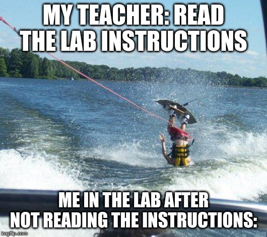 Nailed It Meme | MY TEACHER: READ THE LAB INSTRUCTIONS ME IN THE LAB AFTER NOT READING THE INSTRUCTIONS: | image tagged in memes,nailed it | made w/ Imgflip meme maker