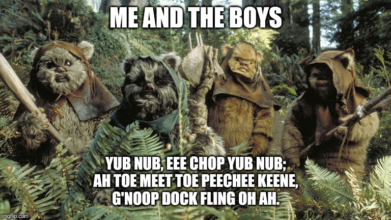 Me And The Boys, Ewok Edition |  ME AND THE BOYS; YUB NUB, EEE CHOP YUB NUB; AH TOE MEET TOE PEECHEE KEENE, G'NOOP DOCK FLING OH AH. | image tagged in ewok,star wars,me and the boys,yub nub,return of the jedi,new star wars movies suck | made w/ Imgflip meme maker