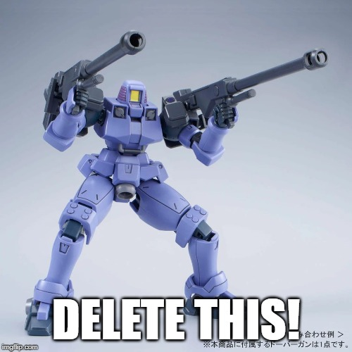 Leo - Delete This |  DELETE THIS! | image tagged in delete this,gundam wing,leo | made w/ Imgflip meme maker