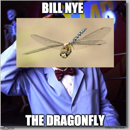 Bill Nye The Science Guy | BILL NYE THE DRAGONFLY | image tagged in memes,bill nye the science guy | made w/ Imgflip meme maker