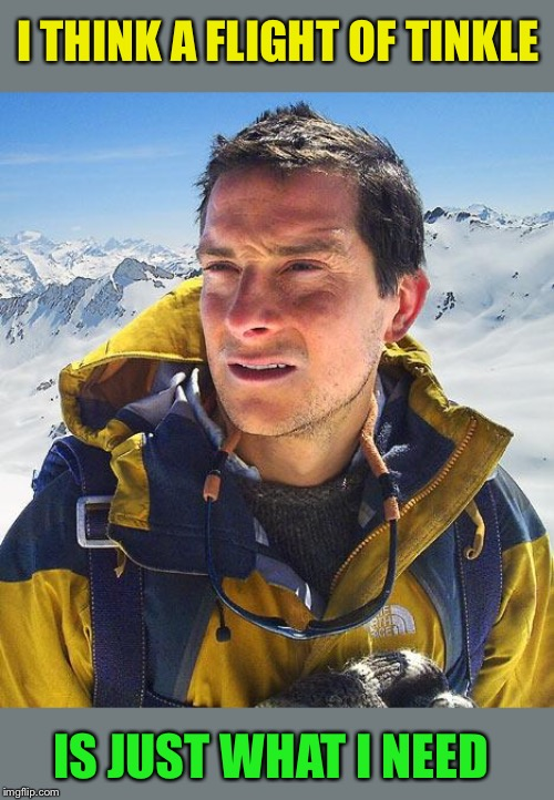 Bear Grylls Meme | I THINK A FLIGHT OF TINKLE IS JUST WHAT I NEED | image tagged in memes,bear grylls | made w/ Imgflip meme maker