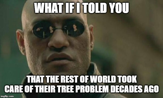 Matrix Morpheus |  WHAT IF I TOLD YOU; THAT THE REST OF WORLD TOOK CARE OF THEIR TREE PROBLEM DECADES AGO | image tagged in memes,matrix morpheus | made w/ Imgflip meme maker