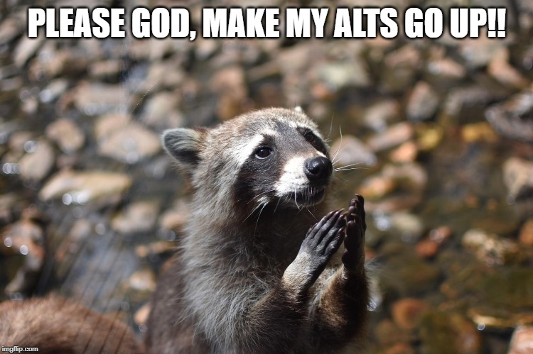 PLEASE GOD, MAKE MY ALTS GO UP!! | image tagged in bitcoin,cryptocurrency,crypto,altcoin | made w/ Imgflip meme maker