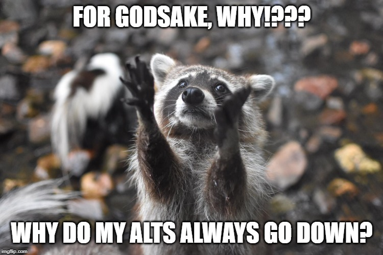 FOR GODSAKE, WHY!??? WHY DO MY ALTS ALWAYS GO DOWN? | image tagged in bitcoin,cryptocurrency,crypto,altcoins | made w/ Imgflip meme maker