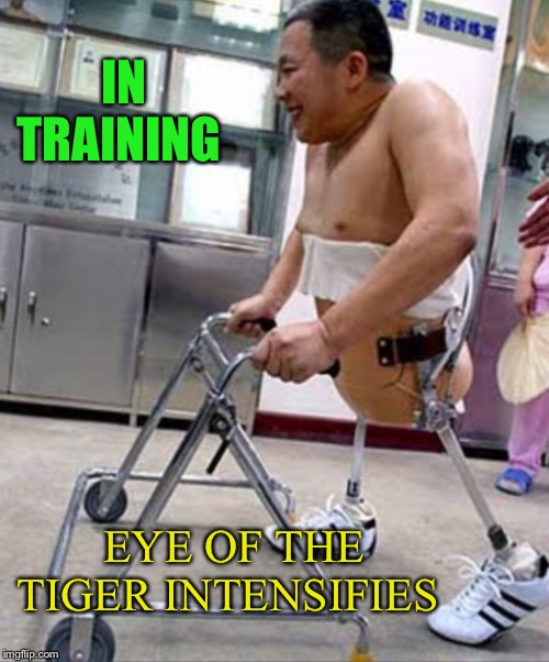 EYE OF THE TIGER INTENSIFIES IN TRAINING | made w/ Imgflip meme maker