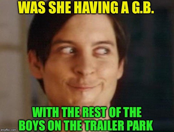 Spiderman Peter Parker Meme | WAS SHE HAVING A G.B. WITH THE REST OF THE BOYS ON THE TRAILER PARK | image tagged in memes,spiderman peter parker | made w/ Imgflip meme maker