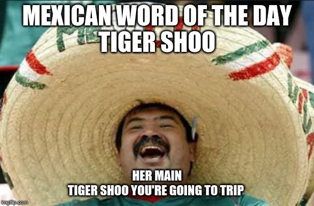 mexican word of the day | MEXICAN WORD OF THE DAY TIGER SHOO HER MAIN TIGER SHOO YOU'RE GOING TO TRIP | image tagged in mexican word of the day | made w/ Imgflip meme maker