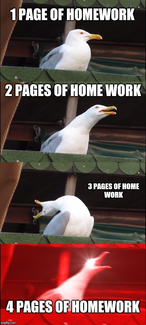 Inhaling Seagull Meme | 1 PAGE OF HOMEWORK 2 PAGES OF HOME WORK 3 PAGES OF HOME WORK 4 PAGES OF HOMEWORK | image tagged in memes,inhaling seagull | made w/ Imgflip meme maker