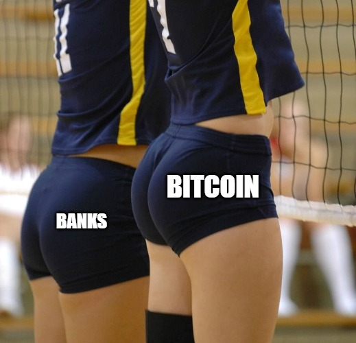 Thicc Bitcoin Booty |  BITCOIN; BANKS | image tagged in volleyball booty,thicc,bitcoin,banks,btc | made w/ Imgflip meme maker