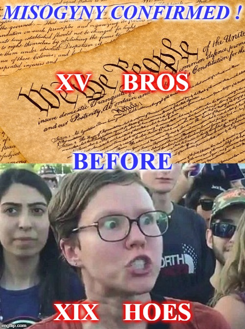 TRIGGER LEVEL:   NUCLEAR ! | MISOGYNY CONFIRMED ! XIX    HOES XV     BROS BEFORE | image tagged in us constitution,triggered liberal,misogyny,conspiracy theory | made w/ Imgflip meme maker