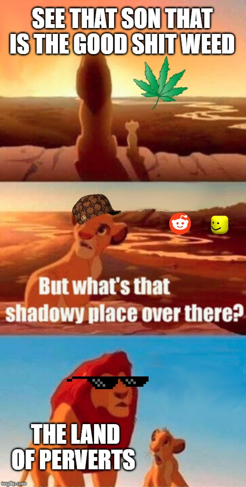 Simba Shadowy Place Meme | SEE THAT SON THAT IS THE GOOD SHIT WEED THE LAND OF PERVERTS | image tagged in memes,simba shadowy place | made w/ Imgflip meme maker