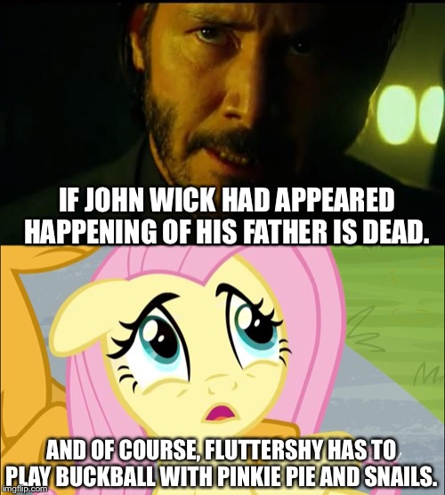 John wick and Fluttershy story | IF JOHN WICK HAD APPEARED HAPPENING OF HIS FATHER IS DEAD. AND OF COURSE, FLUTTERSHY HAS TO PLAY BUCKBALL WITH PINKIE PIE AND SNAILS. | image tagged in john wick,fluttershy,mlp fim,keanu reeves | made w/ Imgflip meme maker