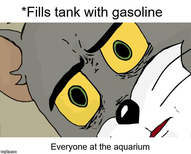 Unsettled Tom | *Fills tank with gasoline Everyone at the aquarium | image tagged in memes,aquarium,funny,dark humor | made w/ Imgflip meme maker