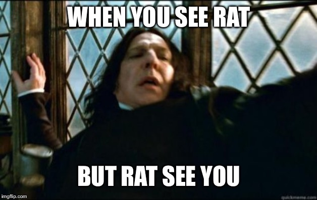 Snape Meme | WHEN YOU SEE RAT BUT RAT SEE YOU | image tagged in memes,snape | made w/ Imgflip meme maker