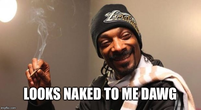 Snoop Dogg | LOOKS NAKED TO ME DAWG | image tagged in snoop dogg | made w/ Imgflip meme maker