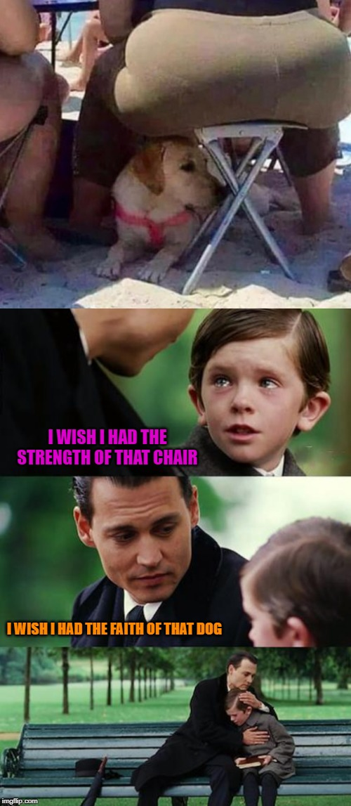 Poor dog doesn't even know the danger he's in! |  I WISH I HAD THE STRENGTH OF THAT CHAIR; I WISH I HAD THE FAITH OF THAT DOG | image tagged in memes,finding neverland,strong chair,funny,faithful dog,suicide | made w/ Imgflip meme maker