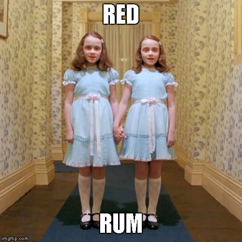 Twins from The Shining | RED RUM | image tagged in twins from the shining | made w/ Imgflip meme maker