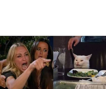 Lady and CAT in table Meme Template