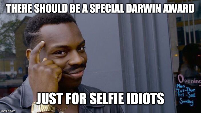 Roll Safe Think About It Meme | THERE SHOULD BE A SPECIAL DARWIN AWARD JUST FOR SELFIE IDIOTS | image tagged in memes,roll safe think about it | made w/ Imgflip meme maker