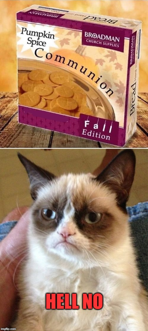 no | HELL NO | image tagged in memes,grumpy cat | made w/ Imgflip meme maker