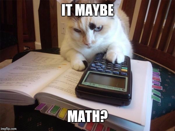 Math cat | IT MAYBE MATH? | image tagged in math cat | made w/ Imgflip meme maker