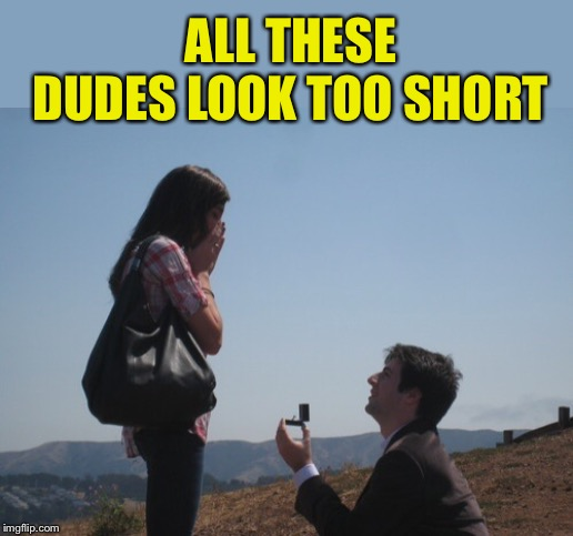 Marriage proposal | ALL THESE DUDES LOOK TOO SHORT | image tagged in marriage proposal | made w/ Imgflip meme maker