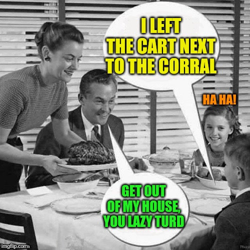 Vintage Family Dinner | I LEFT THE CART NEXT TO THE CORRAL GET OUT OF MY HOUSE, YOU LAZY TURD HA HA! | image tagged in vintage family dinner | made w/ Imgflip meme maker