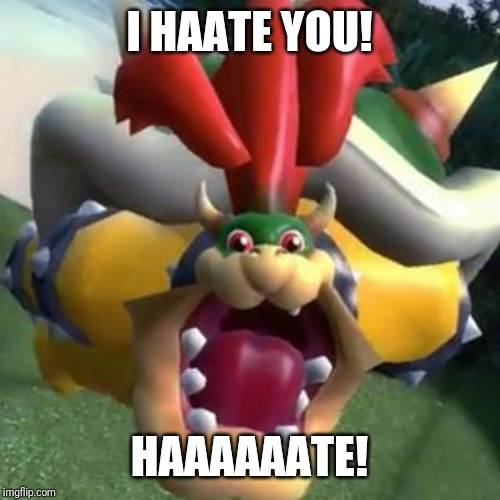 Bowser on LSD | I HAATE YOU! HAAAAAATE! | image tagged in bowser on lsd | made w/ Imgflip meme maker