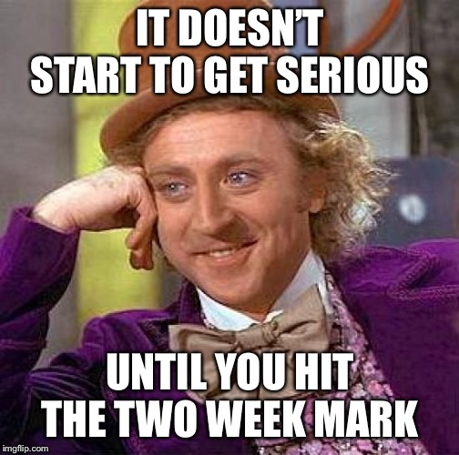 Creepy Condescending Wonka Meme | IT DOESN'T START TO GET SERIOUS UNTIL YOU HIT THE TWO WEEK MARK | image tagged in memes,creepy condescending wonka | made w/ Imgflip meme maker