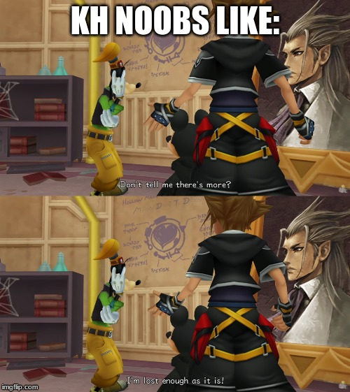 Kingdom Hearts Memes | KH NOOBS LIKE: | image tagged in kingdom hearts,goofy,donald duck,mickey mouse | made w/ Imgflip meme maker