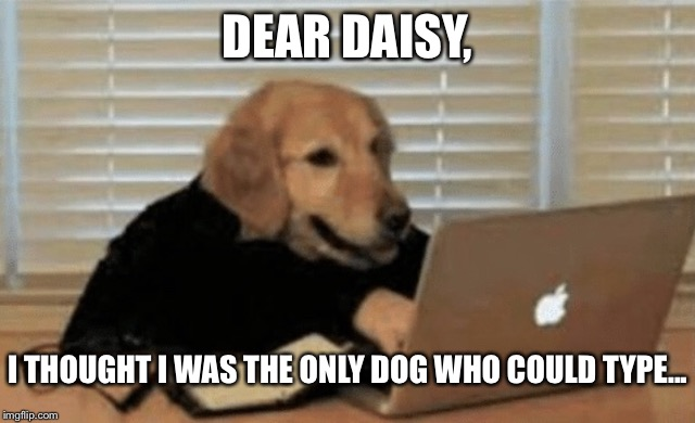 DEAR DAISY, I THOUGHT I WAS THE ONLY DOG WHO COULD TYPE... | made w/ Imgflip meme maker