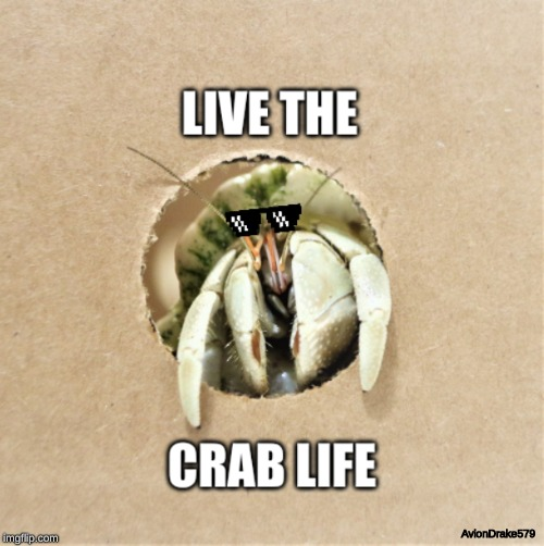 Live the Crab Life | AvionDrake579 | image tagged in crab,thug life | made w/ Imgflip meme maker