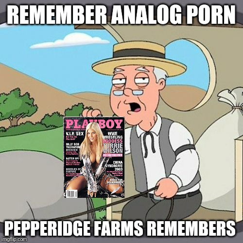 Pepperidge Farm Remembers Meme | REMEMBER ANALOG PORN PEPPERIDGE FARMS REMEMBERS | image tagged in memes,pepperidge farm remembers | made w/ Imgflip meme maker