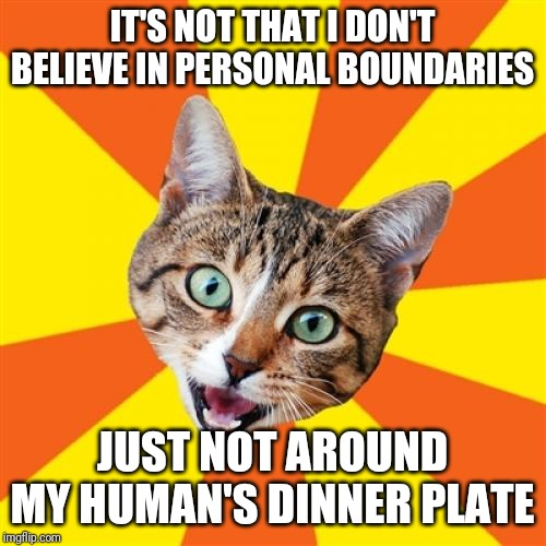 I just want to sniff it |  IT'S NOT THAT I DON'T BELIEVE IN PERSONAL BOUNDARIES; JUST NOT AROUND MY HUMAN'S DINNER PLATE | image tagged in memes,bad advice cat | made w/ Imgflip meme maker