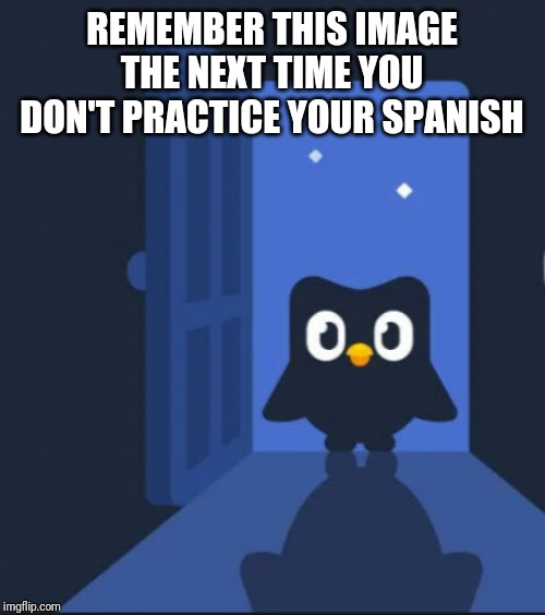 Duolingo bird | REMEMBER THIS IMAGE THE NEXT TIME YOU DON'T PRACTICE YOUR SPANISH | image tagged in duolingo bird | made w/ Imgflip meme maker
