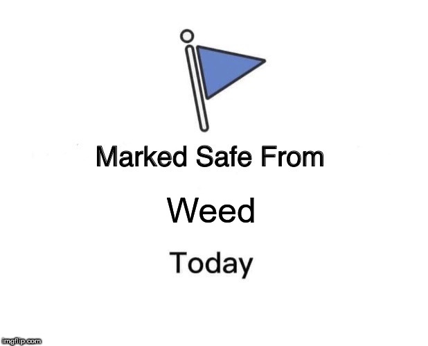 Marked Safe From Meme | Weed | image tagged in memes,marked safe from | made w/ Imgflip meme maker