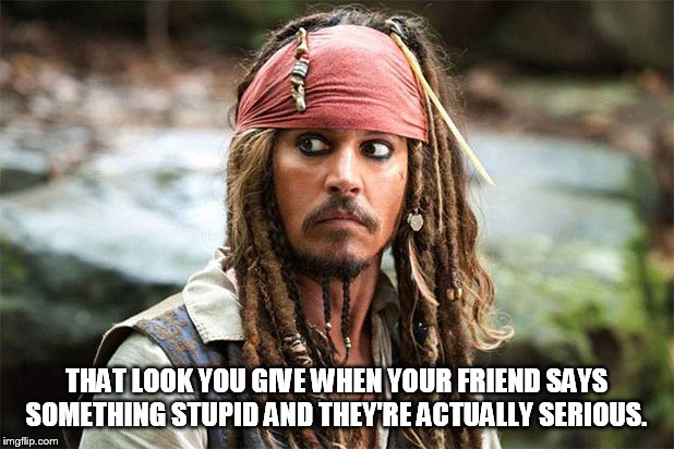 THAT LOOK YOU GIVE WHEN YOUR FRIEND SAYS SOMETHING STUPID AND THEY'RE ACTUALLY SERIOUS. | image tagged in funny,meme,jack sparrow,johnny depp,that look | made w/ Imgflip meme maker