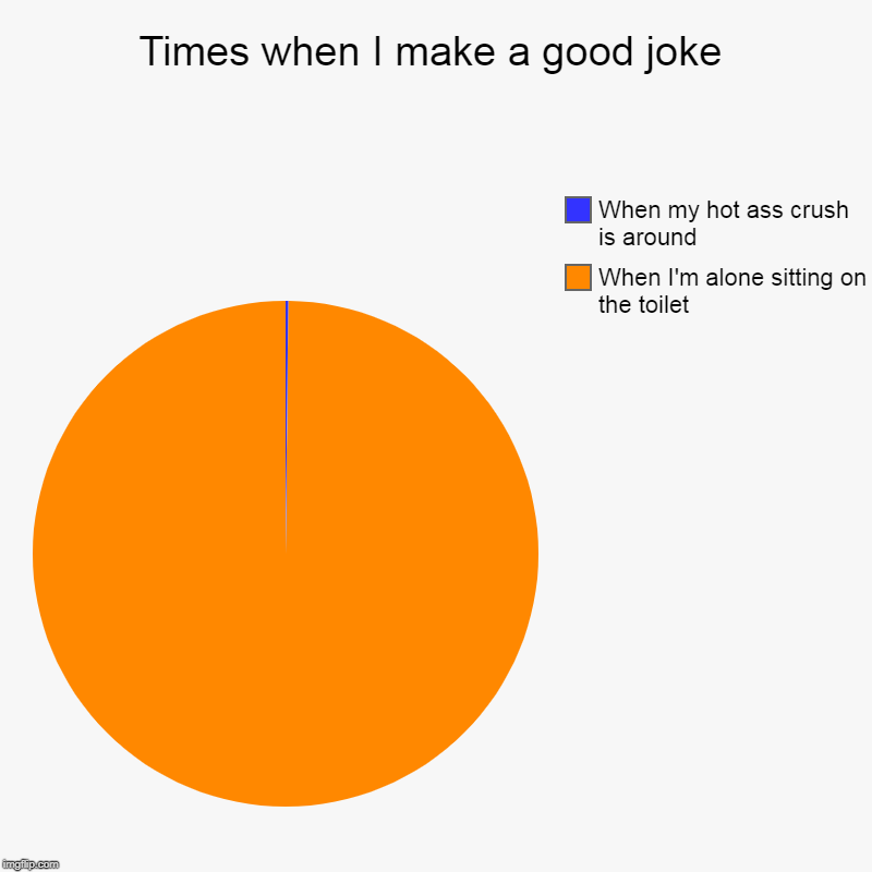 Times when I make a good joke | When I'm alone sitting on the toilet, When my hot ass crush is around | image tagged in charts,pie charts | made w/ Imgflip chart maker