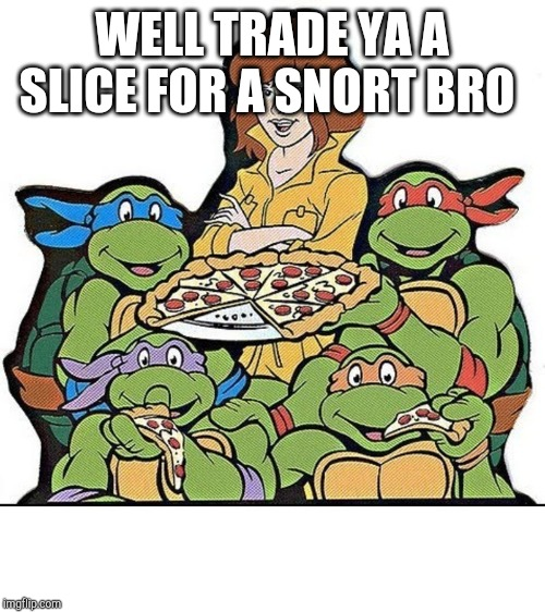 Teenage Mutant Ninja Turtles | WELL TRADE YA A SLICE FOR A SNORT BRO | image tagged in teenage mutant ninja turtles | made w/ Imgflip meme maker