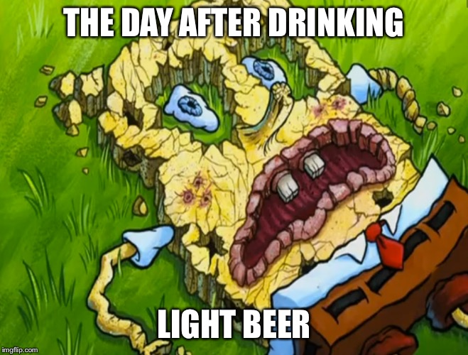 THE DAY AFTER DRINKING LIGHT BEER | made w/ Imgflip meme maker